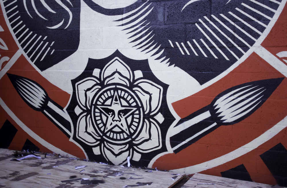 15 Minutes of Hero Worship with Shepard Fairey