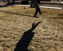 Slackline on Campus