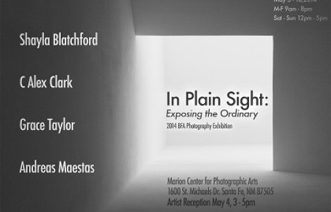 In Plain Sight exhibits at Marion Center through May 18.