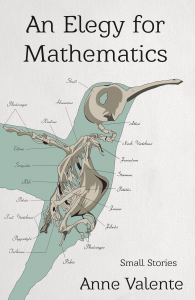 An Elegy for Mathematics by Anne Valente