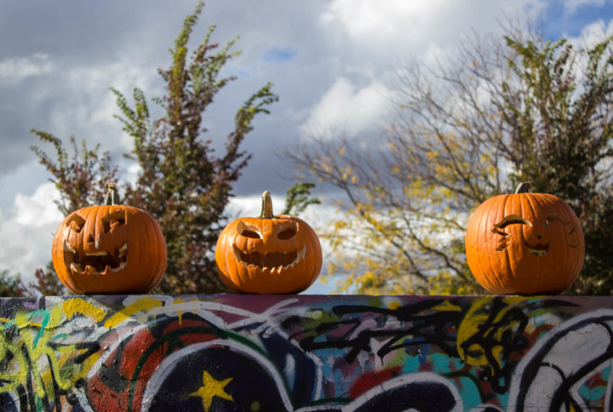 Jackolanterns on display on top of the graffiti wall in front of the King dorms. Photo by Kyleigh Carter.