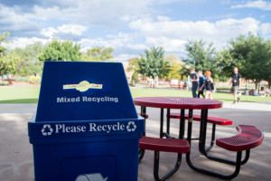 Student Voice is responsible for the recent introduction of a recycling program on campus after it was requested by so much of the student population. Photo by Jennifer Rapinchuk