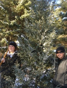 Alison Gamache chops down a tree with Kristen Thorstad, a long time family friend. Photo provided by Gamache.
