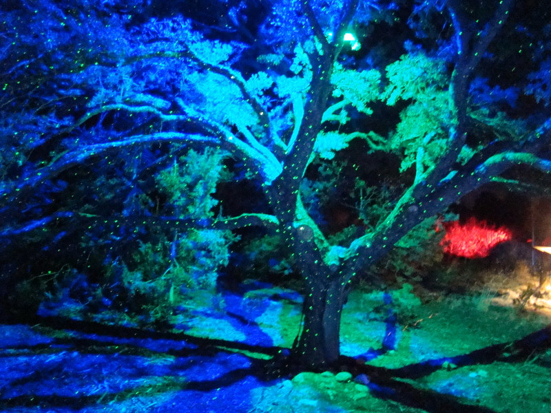 During GLOW, the Santa Fe Botanical Gardens are lit up with spectacular displays. Photo provided by Glow.
