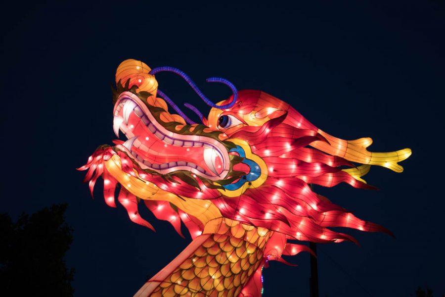 An enormous dragon greets you at Albuquerque's Chinese Lantern Festival. Photo by Chris Dorantes