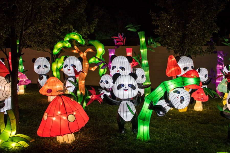 Frolicking pandas at the Chinese Lantern Festival. Photo by Chris Dorantes